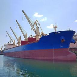 Bulk Cargo- Datis Export Group-Supplier