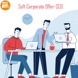 soft corporate offer-sco-datis export group-supplier-price